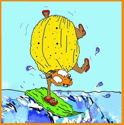 Shannon Kernaghan Surf-bug400 Catch the Wave! Adventure Humor Lifestyle Travel